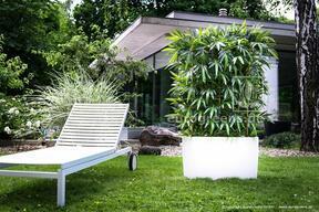 Umelý plot Bambus 180 cm