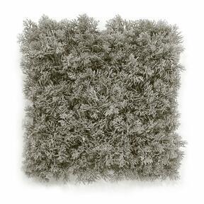 Umelý sivý machový panel - 25x25 cm