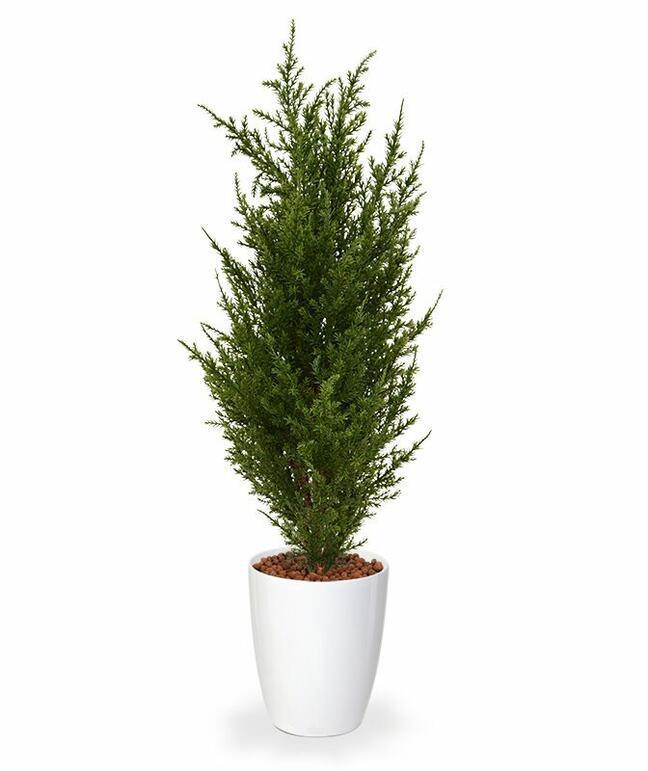 Umelý strom Cypruštek tujovitý 50 cm