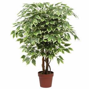 Umelý strom Fikus 110 cm