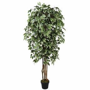 Umelý strom Fikus Benjamin zeleno biely 170 cm