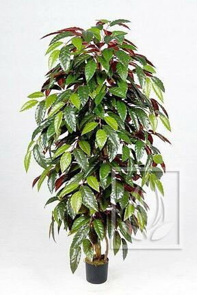 Umelý strom Fikus ingens 120 cm