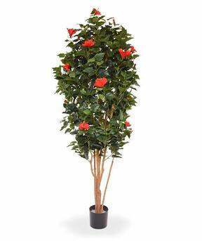 Umelý strom Ibištek červený 175 cm