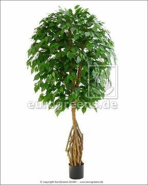 Umelý strom mangrovový Fikus 170 cm