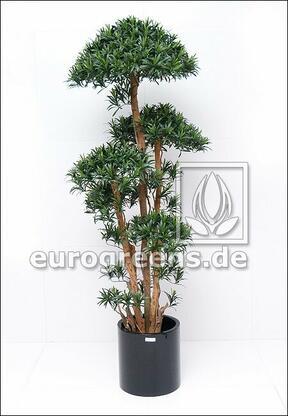 Umelý strom Nohovec 180 cm