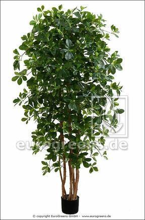 Umelý strom orientálny Fikus 190 cm