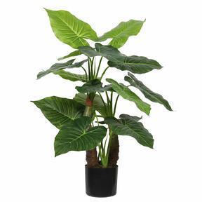 Umelý strom Taro Araceae 80 cm