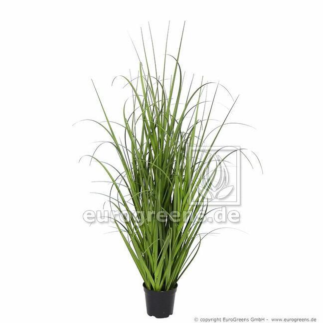 Umelý zväzok trávy Miskant obrovský v kvetináči 70 cm