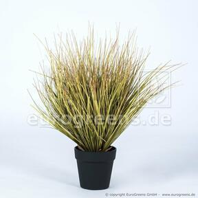 Umelý zväzok trávy Panicum v kvetináči 55 cm