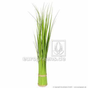 Umelý zväzok trávy Trsť obyčajná 45 cm