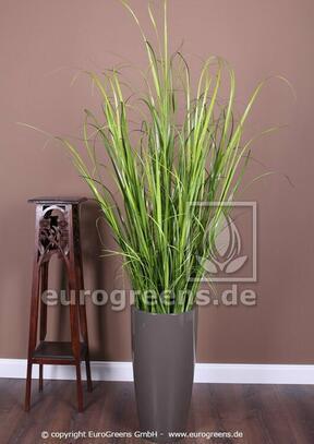 Umelý zväzok trávy Trsť obyčajná v kvetináči 170 cm